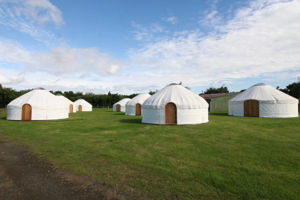Multiple festival yurts from Roundhouse Yurts at Edinburgh.